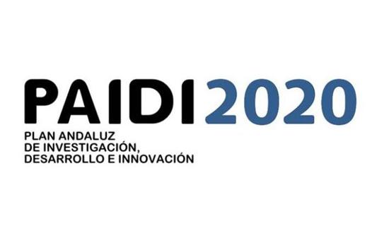 PAIDI2020